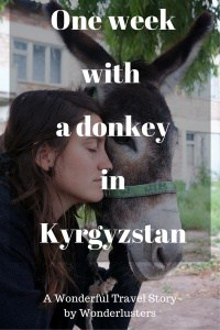 One week with a donkey in Kyrgyzstan - Journal of Nomads