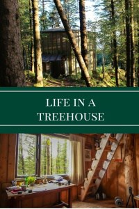 Life in a tree house - Journal of Nomads