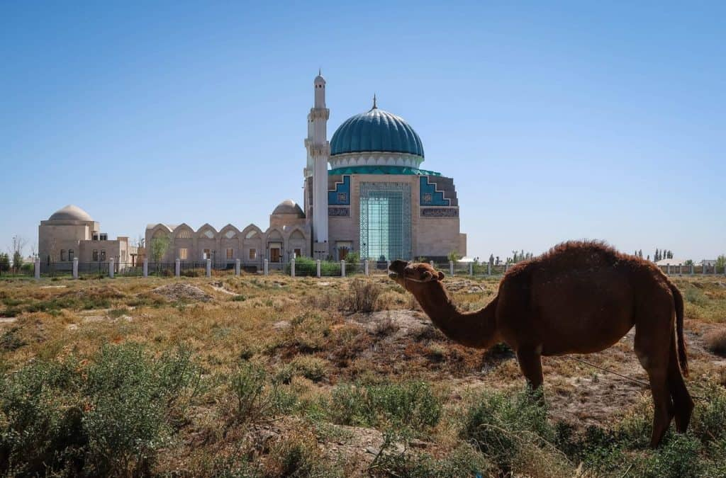 Turkestan Kazakhstan Friday Mosque camel
