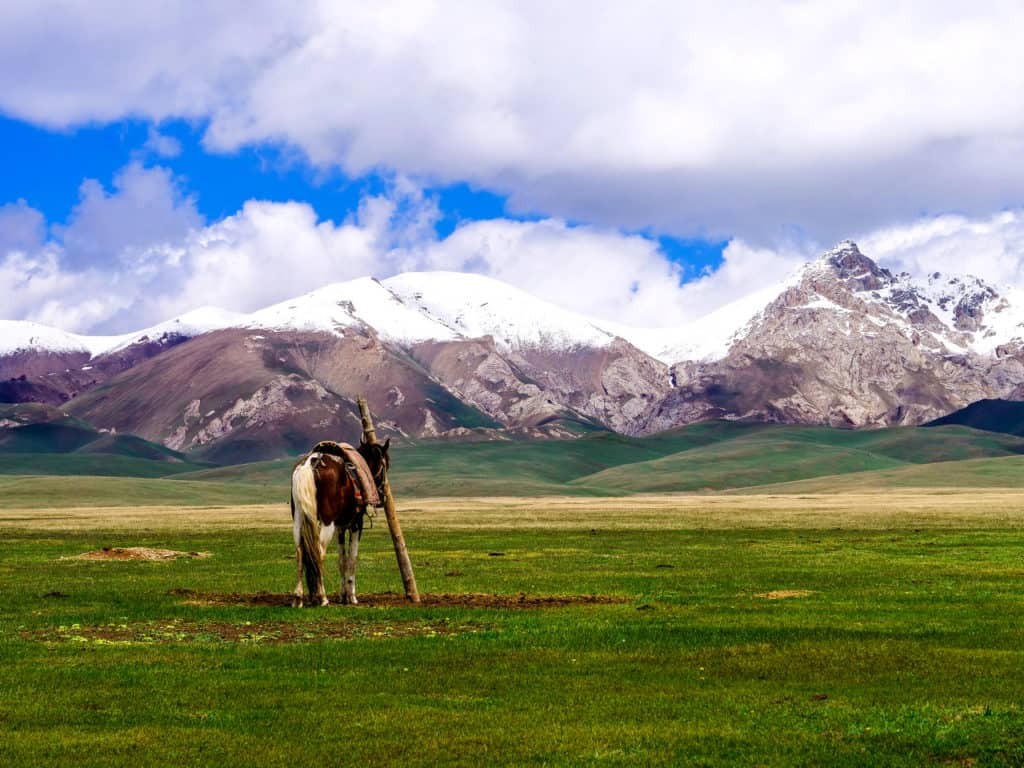 Adventure Trekking in Kyrgyzstan July 2019 - horseback trek in Kyrgyzstan - Song Kol Lake