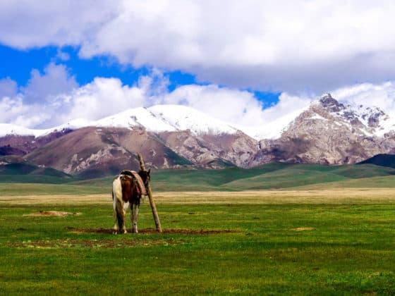 Adventure Trekking in Kyrgyzstan July 2019 - horseback trek in Kyrgyzstan - Song Kol Lake