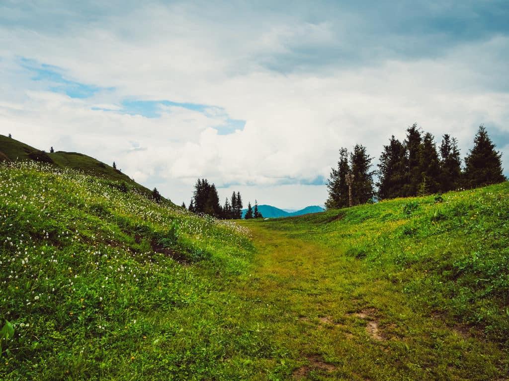 Almaty trekking - Kok Zhailau - Journal of Nomads