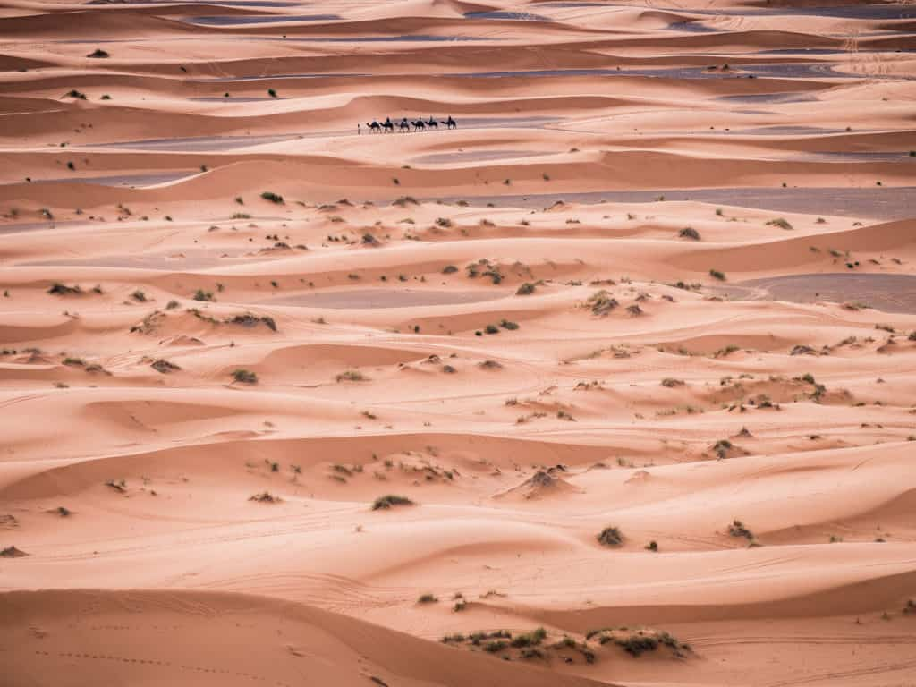 How to plan a desert trip to Merzouga and other fun things to do in the Sahara, Morocco. - Journal of Nomads - camel trips in Merzouga