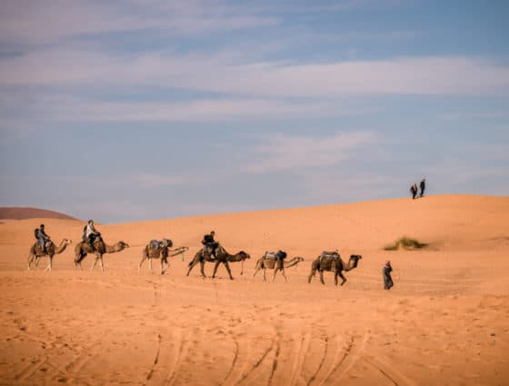 How to plan a desert trip to Merzouga and other fun things to do in the Sahara, Morocco. - Journal of Nomads - Camel trip in the desert