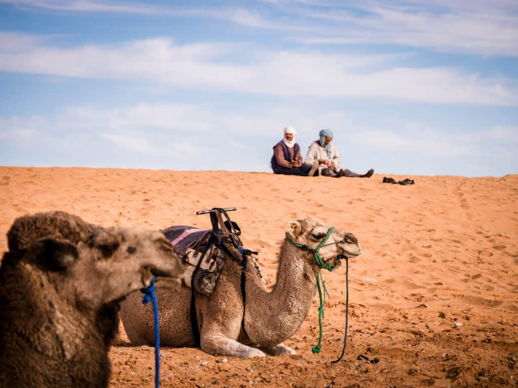 How to plan a desert trip to Merzouga and other fun things to do in the Sahara, Morocco. - Journal of Nomads - camel trip in Sahara desert