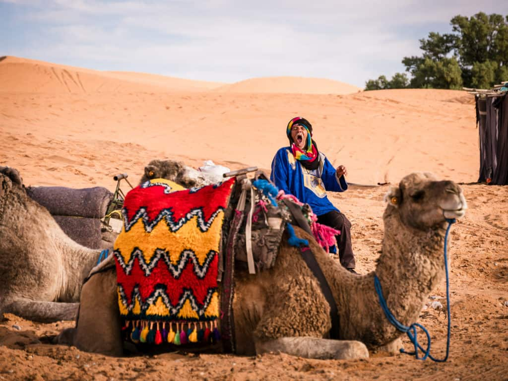 How to plan a desert trip to Merzouga and other fun things to do in the Sahara, Morocco. - Journal of Nomads - Camel trip in desert