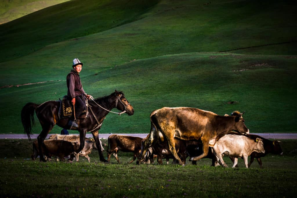 My favorite travel photos of 2018 - Journal of Nomads - nomadic shepherd Kyrgyzstan