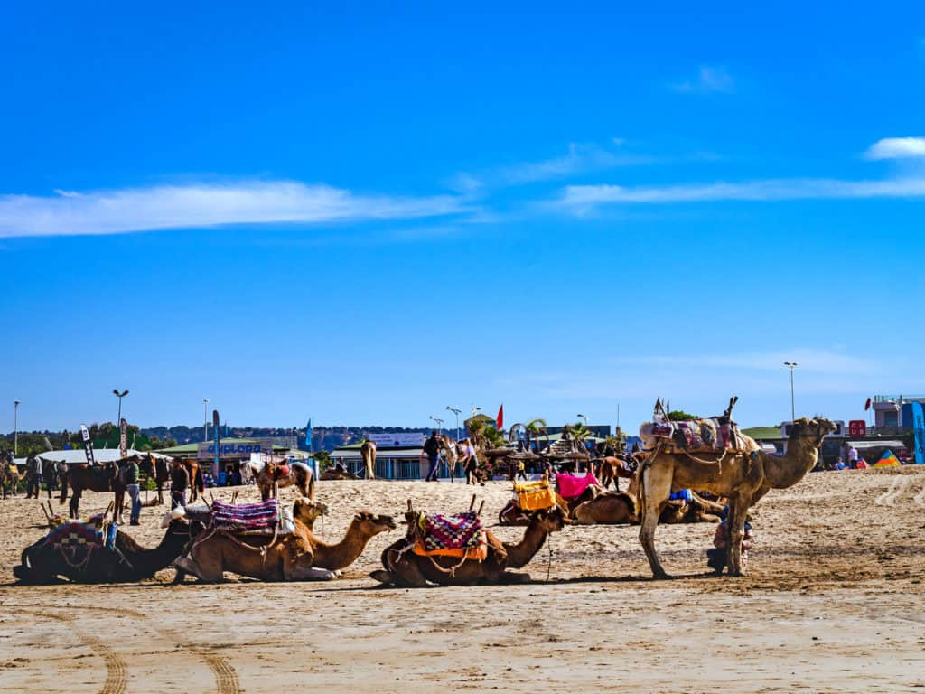 Things to see and do in Essaouira – The complete guide to Morocco's windy city - Essaouira Beach- Journal of Nomads