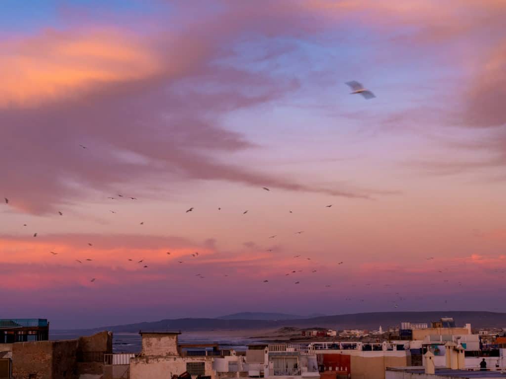 Best places to stay in Essouira - Chill Art Hostel - Journal of Nomads