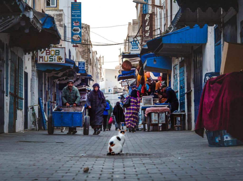 Things to see and do in Essaouira – The complete guide to Morocco's windy city - Journal of Nomads