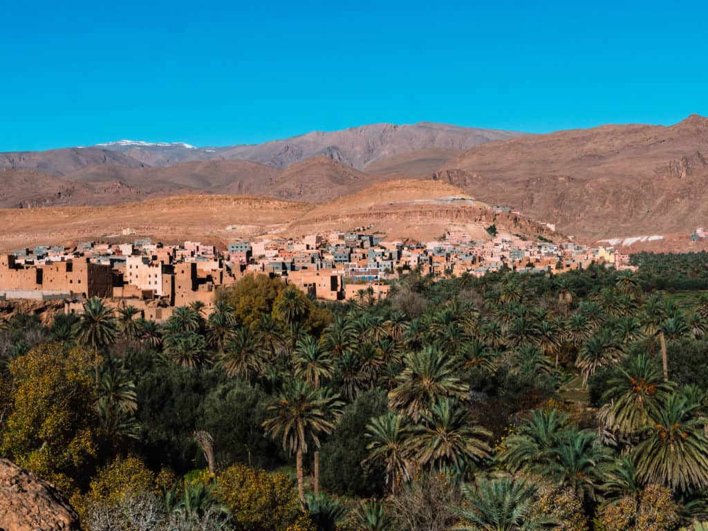 Rock climbing and other fun things worth doing in the Todra Gorges and Tinerhir - Things to do in Todra Gorges - Morocco - Palm Grove - Journal of Nomads
