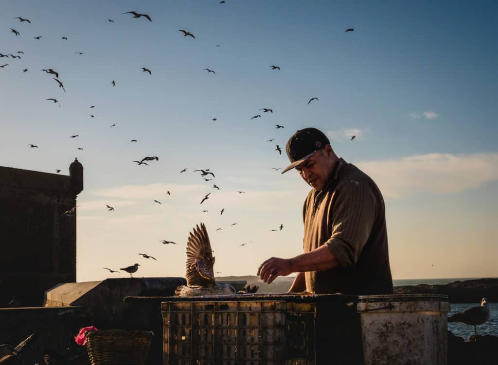 Things to see and do in Essaouira – The complete guide to Morocco's windy city - Essouira port - Journal of Nomads