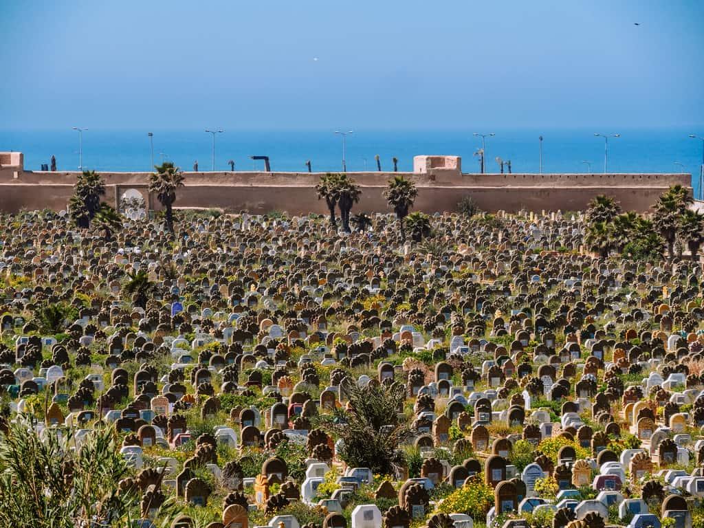 beautiful cemetery Rabat - beautiful graveyard Rabat - journal of nomads