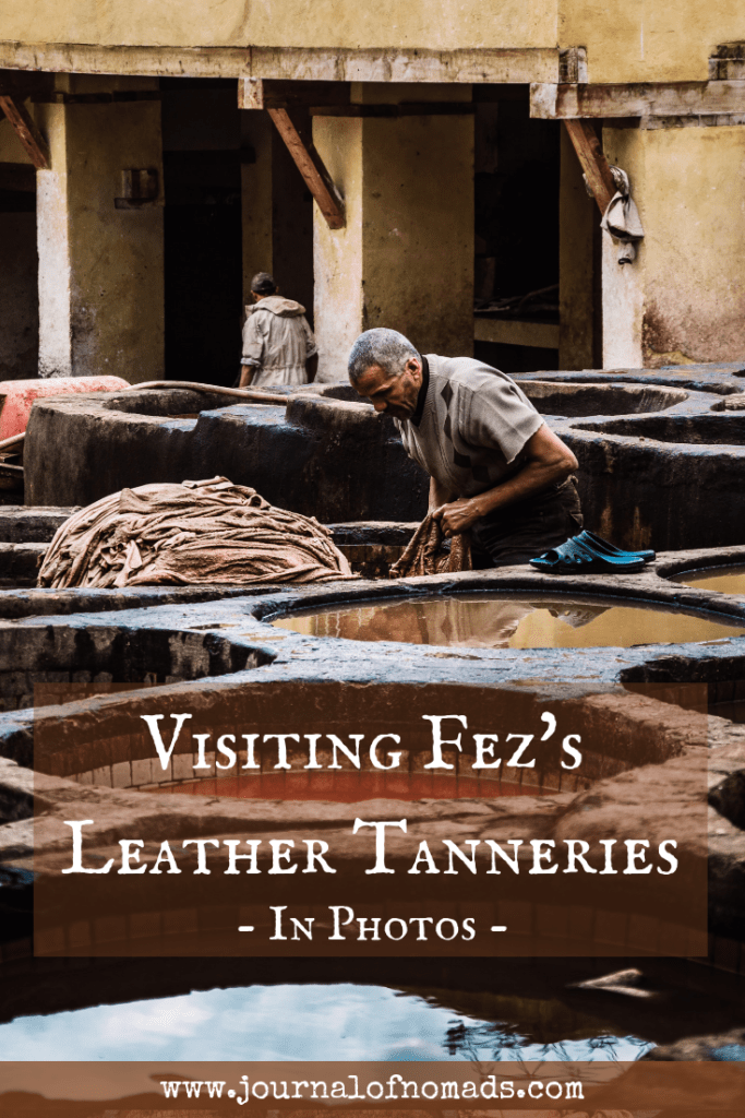 How to visit the Leather Tanneries of Fez, Morocco - How much does it cost - Tips - Photo-essay - Journal of Nomads