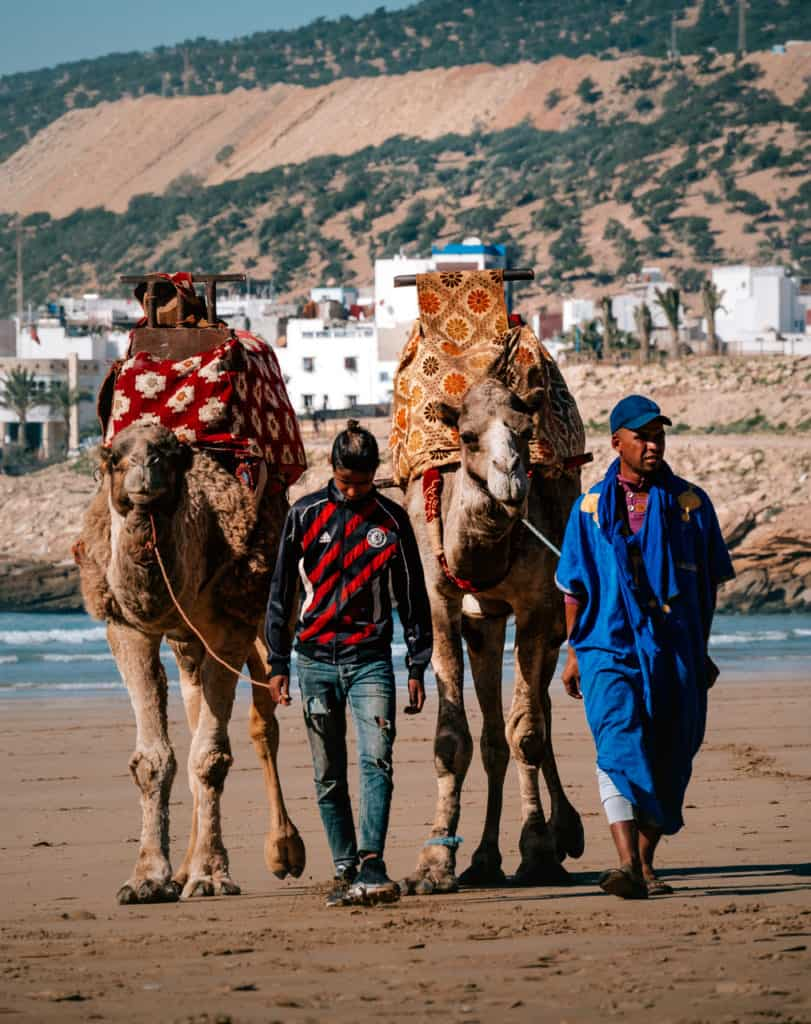 scams in Morocco - inflate camel ride prices - Journal of Nomads