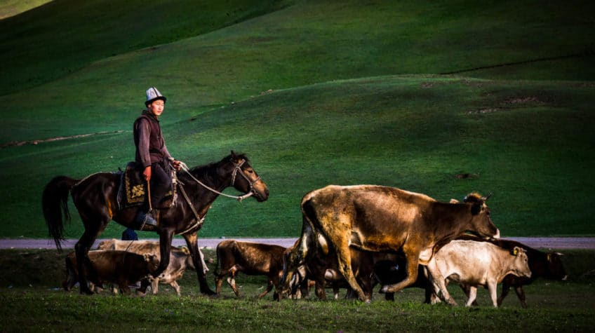 Reasons why you should visit Kyrgyzstan - Journal of Nomads