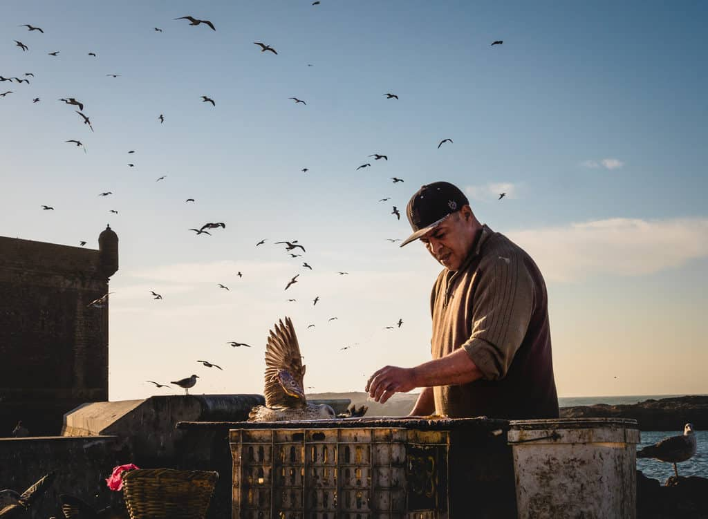 Moroccan fisherman in the port of Essaouira - Journal of Nomads