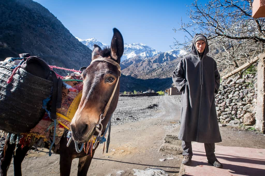 porter with his donkey on trek to toubkal - checkpoint on the trek to toubkal - police checkpoint while trekking to toubkal - journal of nomads