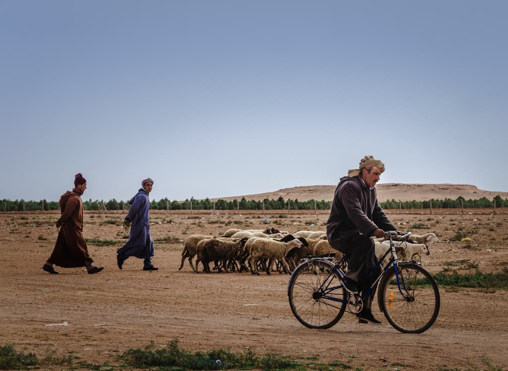 People of Morocco - shepherds in Morocco - Journal of Nomads