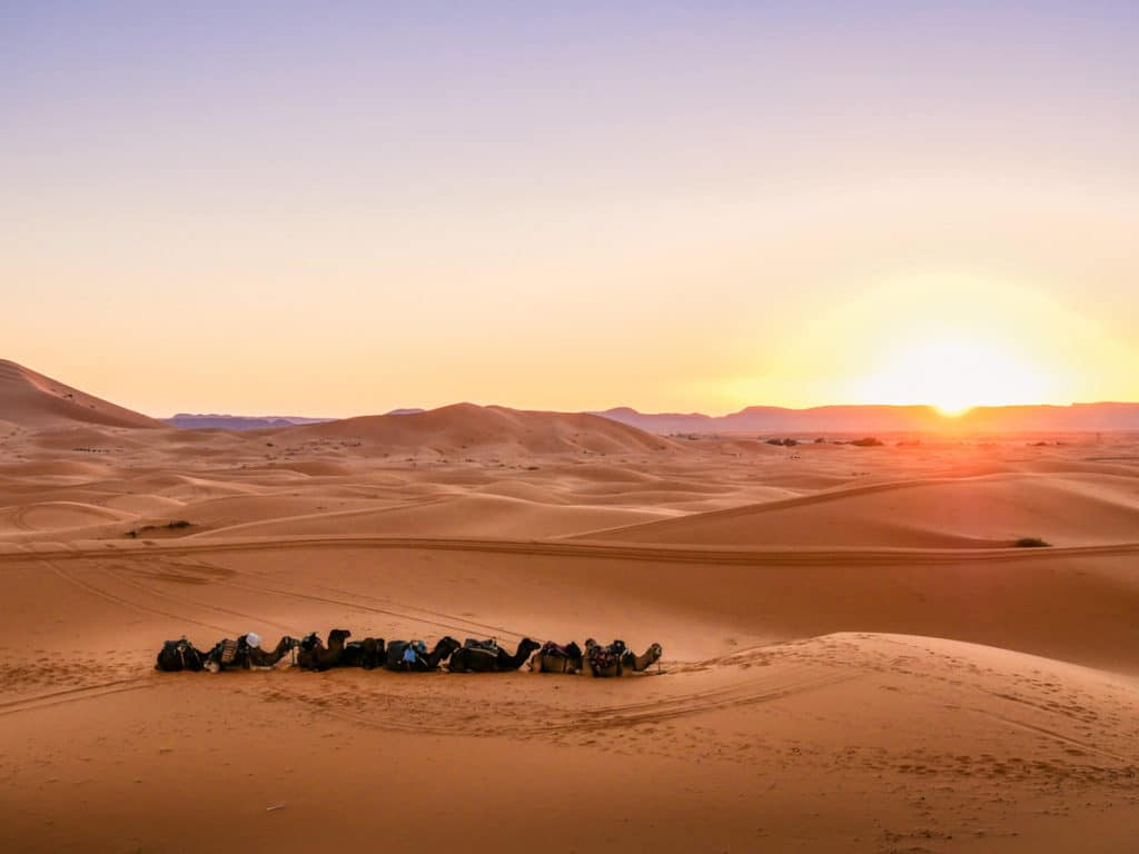 Sunset in Sahara Desert - Lumix G90 by Cynthia Bil - Journal of Nomads