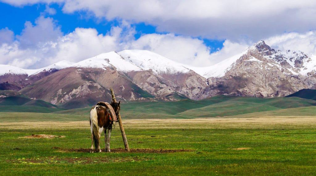 Going on a Horse Trek to Song Kol in Summer and Winter - Everything you need to Know