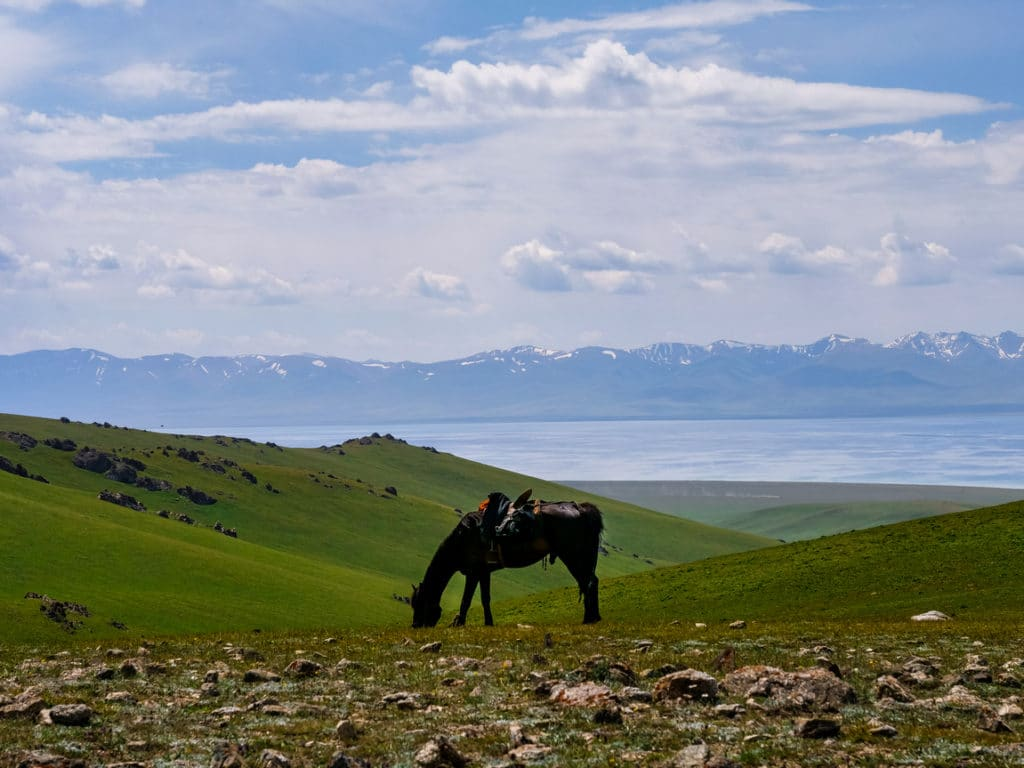Mountain pass from Kyzart to Song Kol lake - Journal of Nomads