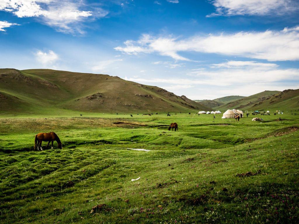 Horses grazing around Song Kol Lake - Journal of Nomads