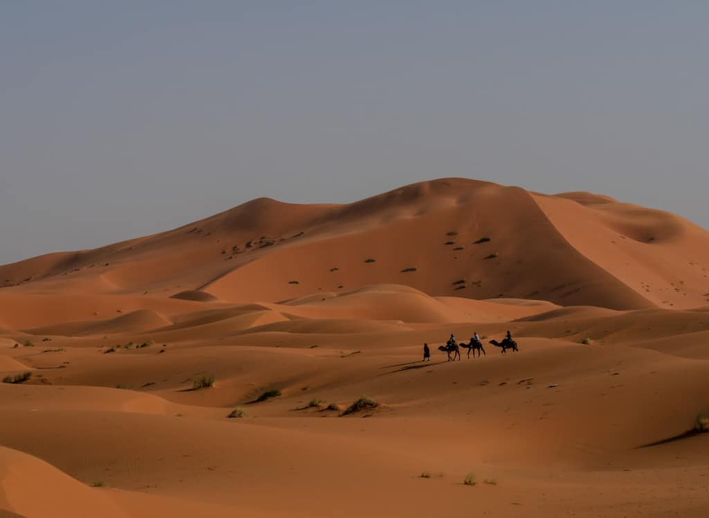 Sahara desert Merzouga Morocco - Journal of Nomads