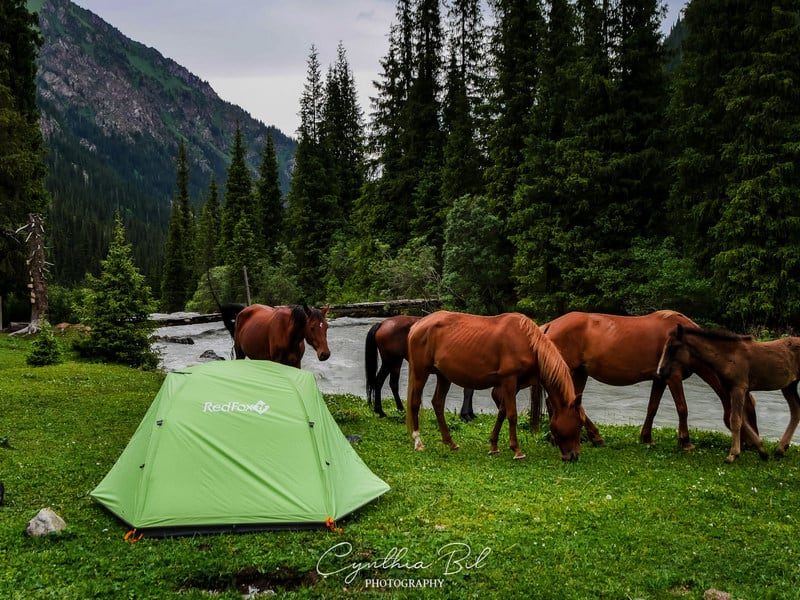 ideal camping spot - Ala Kul - Journal of Nomads