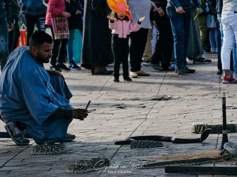 Marrakech snake charmer - square Jemaa el Fna