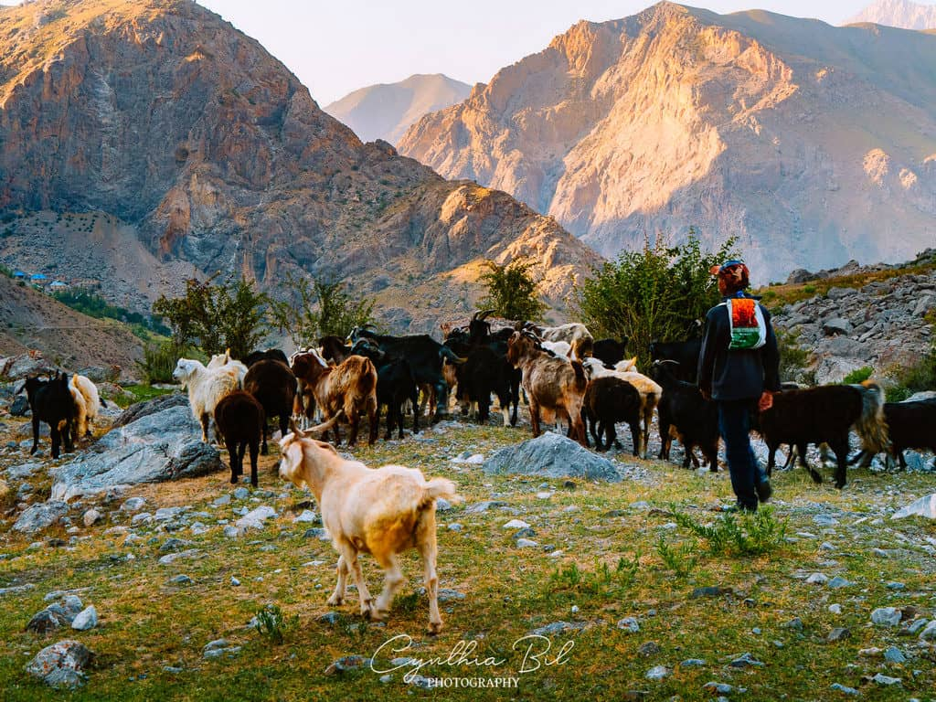 Shepherds in Fann Mountains Tajikistan