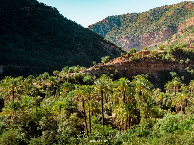 How to visit Paradise Valley Agadir – 9 Things you Should Know