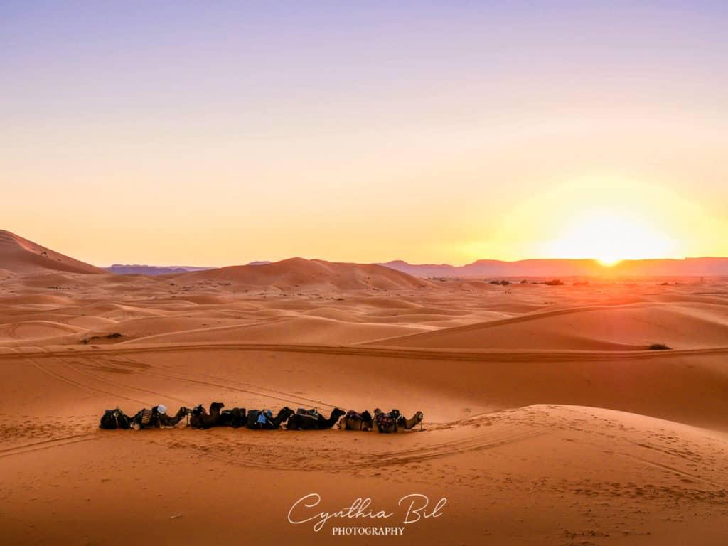 Sunset Sahara desert Morocco