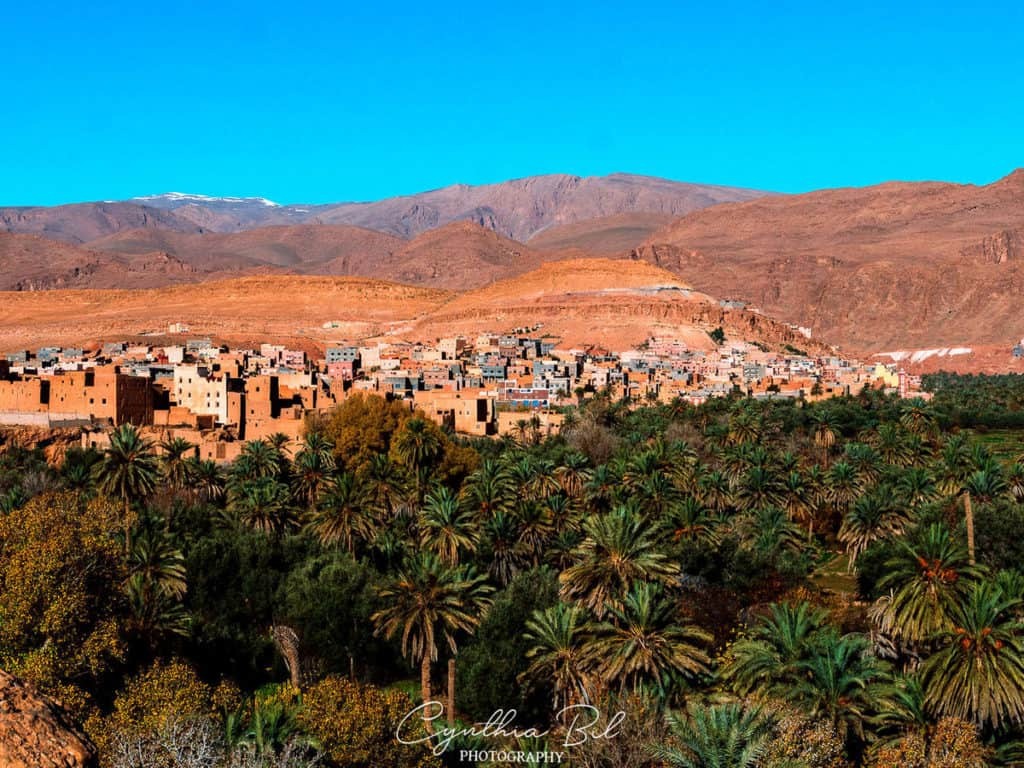 Palm grove Tinerhir - Oasis Morocco - Beautiful places Morocco