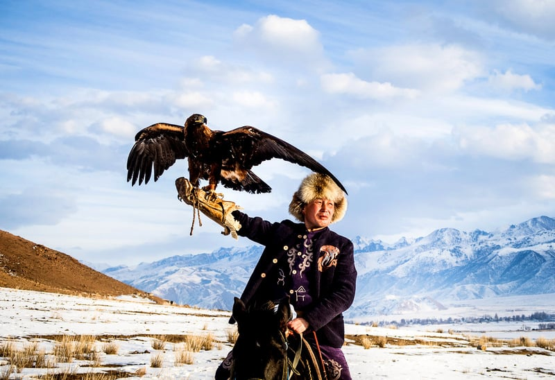 eagle hunters during winter