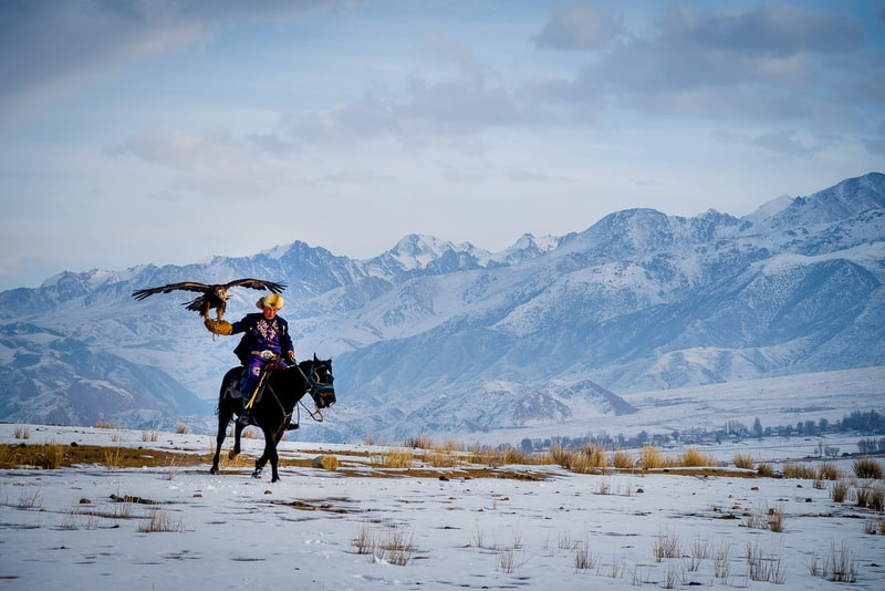 galloping eagle hunter in Kyrgyzstan in winter