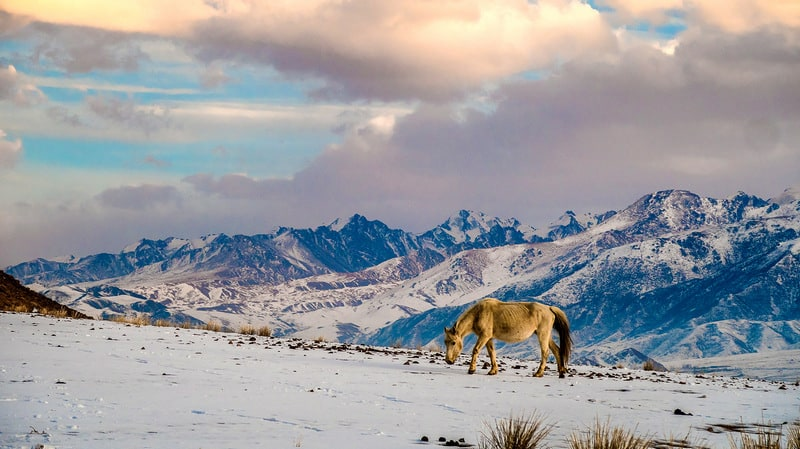 snowy landscapes of Kyrgyzstan in winter